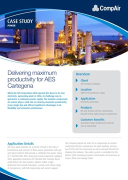 Delivering maximum productivity for AES Cartegana
